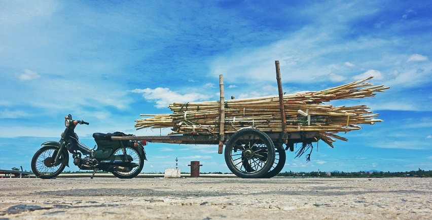 motorcycle with bamboo